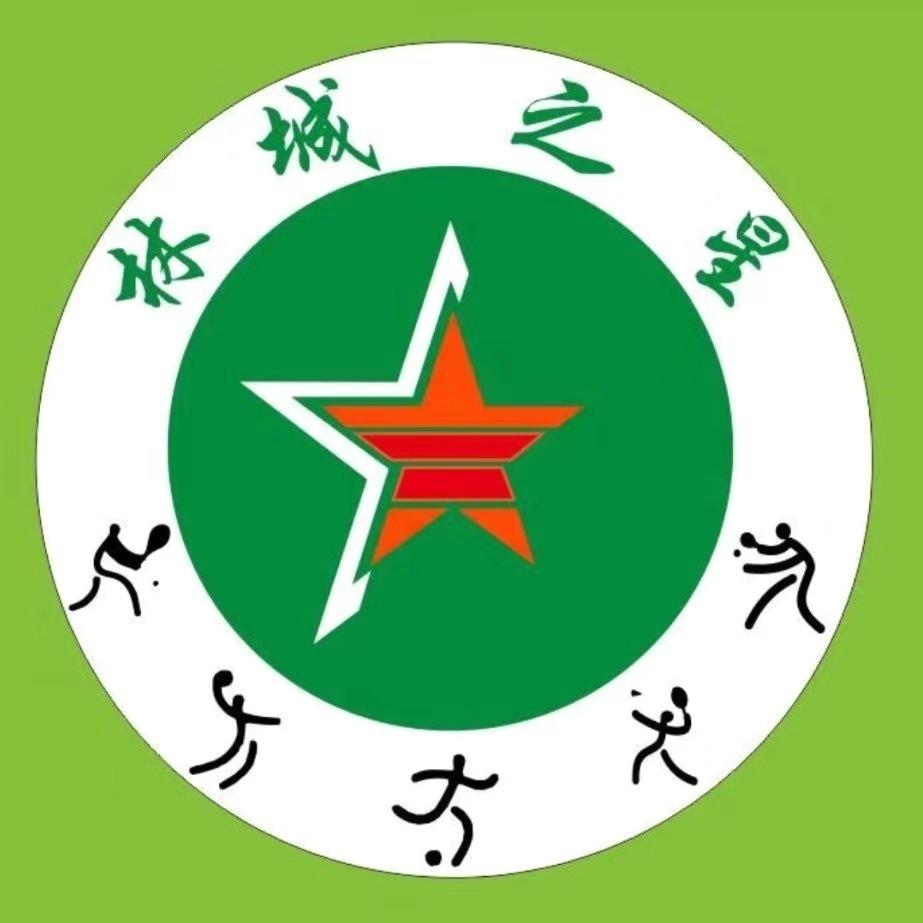 Lincheng Zhixing Youth Football