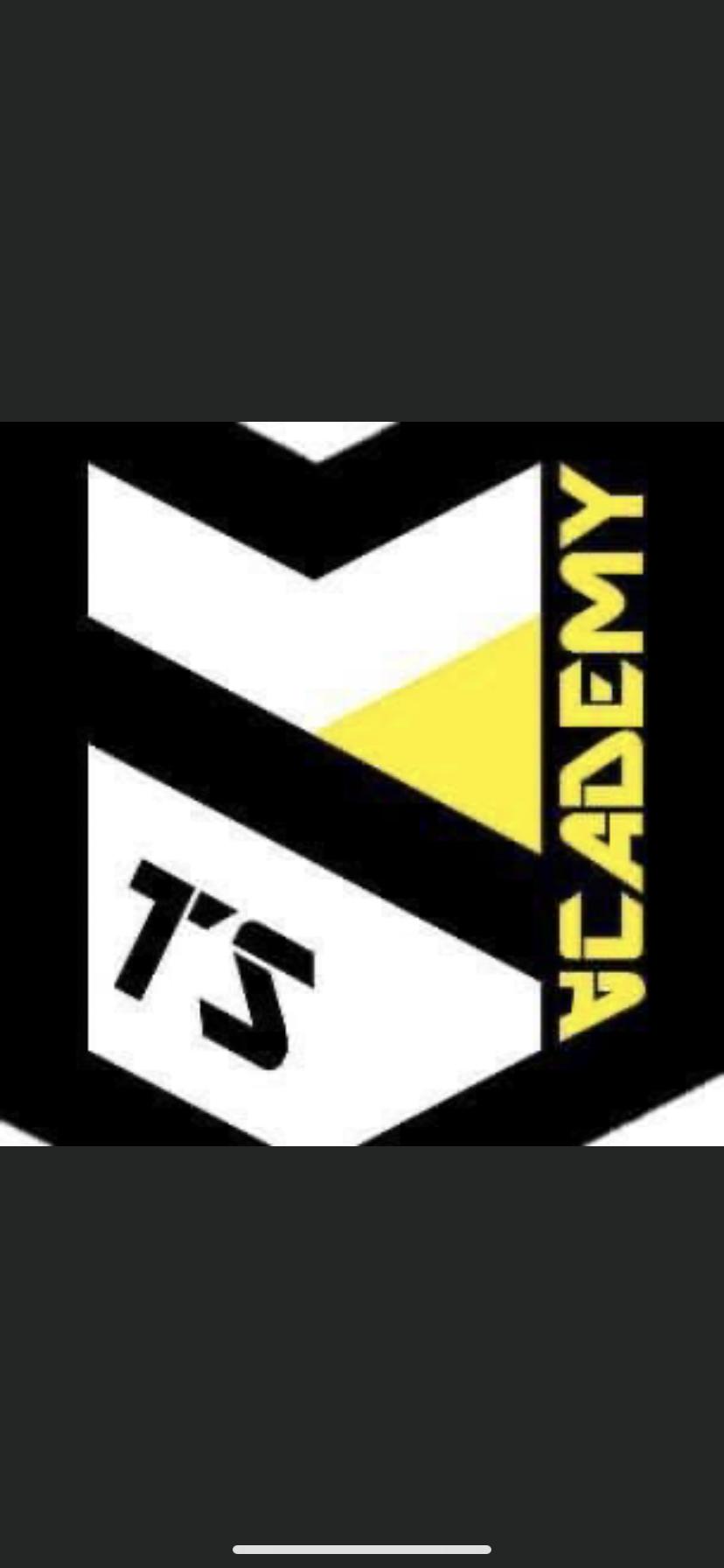 TS Academy